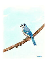 Blue jay, 8 x 10 inches Art print of an original watercolor painting by Anna Lee