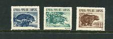 Albania 1961  #589-91  fauna otter badger bear  3v.  MNH  E164