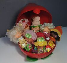 Vintage Strawberry Shortcake Dolls, Pets and Carry Case