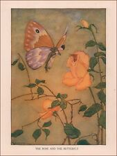 BUTTERFLY FAIRY & ROSE by Milo Winter, vintage print, authentic 1919
