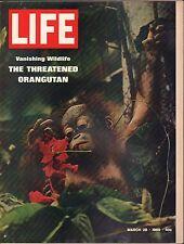 Life Magazine March 28 1969 Birthday, The Orangutan Vg 042216Dbe2