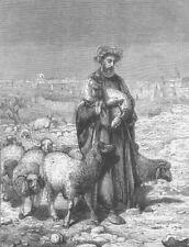 ISRAEL. The Shepherd of Jerusalem, antique print, 1863