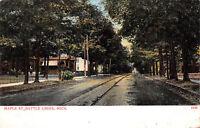 Battle Creek Michigan 1908 Postcard Maple Street