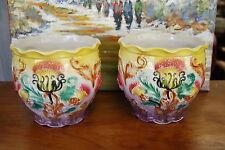 Paire de Cache-Pots en Barbotine à décor de chardons.