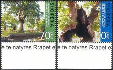 Albania 2006 Plane Trees/Forests/Nature/Conservation/Environment 2v set (n45853)