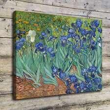 SR100593-Irises Vincent Van Gogh Home Decor HD Canvas Print Wall Art Painting