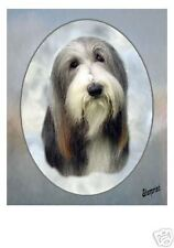 Bearded Collie Dog Mousemat No 1 by Starprint - Auto combined postage
