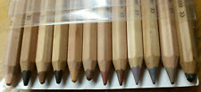 LYRA Color-Giants Colored Pencils - 6.25mm Cores - Set of 12 - Skin Tone Colors