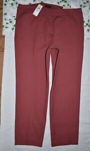 ANN TAYLOR CURVY ANKLE LENGTH PANTS SIZE 10 NEW ~$89.99