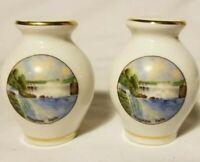 Niagara Falls Shakers salt pepper set Vintage souvenir Japan porcelain