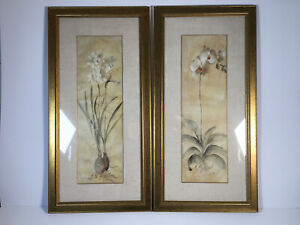 2 Laura Ashley Framed Art Prints - Orchid and Bulb/Root by Cheri Blum