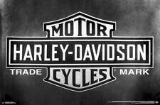 fe3ae1731e6 HARLEY-DAVIDSON MOTORCYCLES Official Trademark Logo Emblem WALL POSTER  (2017)