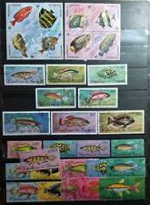 BURUNDI Fish Used Stamp Lot E3551