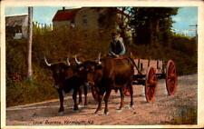 Postcard Local Oxpress Yarmouth Nova Scotia Canada Valentine