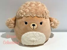 """Squishmallows Jacinda the Poodle 12"""" Plush Brand NEW Hard to Find"""