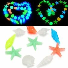 Stone Glow In The Dark Aquarium Fish Tank Decor Sea Shells Beach Conch