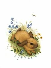 Floppy Eared Bunny Rabbit Garden Dragon Fly Easter Greeting Card By Current