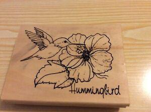 "Anita's w/m Rubber Stamp. Hummingbird. 4.5"" x 3.5""."