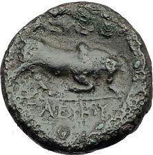 SELEUKOS I Nikator 312BC Genuine Ancient SELEUKID Greek Coin MEDUSA BULL i64663
