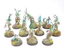 WARHAMMER Fantasy 10 WOOD ELF sylvaneth Dryads ben dipinto B