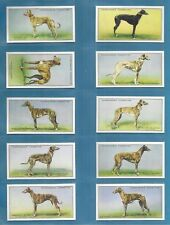 Churchman cigarette cards - RACING GREYHOUNDS - Full mint condition set.