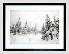 LANDSCAPE WINTER SCENE SNOW FOREST TREES BLACK FRAMED ART PRINT B12X12003