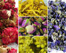 Dried Flowers, Dried Petals, 60 Types! Tea, Cake Decor, Coctail Garnishes Craft