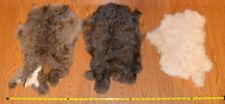Lot of (3) Natural Color Rabbit Pelts NATURAL GENUINE RABBIT SKIN Bunny pelt