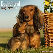 Dachshund Pelo Largo-Perros-Arte calendario de pared 2019