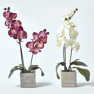 Artificial Silk Orchid Flowers in Tall Stone Pot with Lifelike Petals
