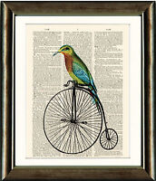 Old Antique Book page Art Print - Bird on a Penny Farthing Dictionary Wall Art