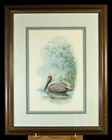 Vintage watercolor/gauche painting of a Pelican by Don Balke (1987)