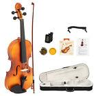 Glarry GV300 Violin Grained maple 4/4 Matte for Beginners Case/Rosin/Strings for sale