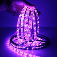 5M 500CM Purple LED Strip Lights for Car Motorcycle Bike 3528 5050 SMD 12V US