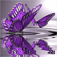 "5D DIY Diamond Painting ""Butterfly"" 3D Embroidery Set Cross Stitch Rhinestone"