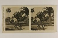 Francia Nice Costa Azure Le Jardins c1925 Foto Stereo Vintage Analogica