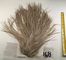 Natural Blue Dun Rooster Saddle Hackle Long Thin Dry Fly Tying Feathers #068