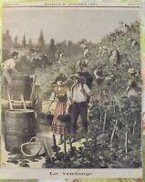 1891 , samedi 31 octobre la Vendange en Bourgogne
