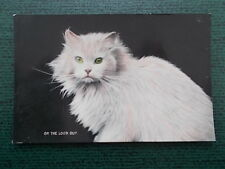 VINTAGE CAT POSTCARD - ON THE LOOK OUT - CATS - KITTENS