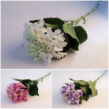 Fleurs artificielles et séchées de décoration intérieure pour salon