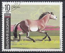 Bulgarien gestempelt Pferd Tier Wildpferd Wildtier Natur Landschaft / 52