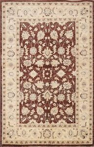 3x5 Floral Chobi-Peshawar Traditional Oriental Area Rug Hand-knotted Wool Carpet