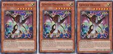Genesis Dragon GLD4-EN028 X 3 1st YuGiOh - Gold Series 4: Pyramids Edition
