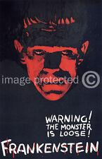 Frankenstein Vintage Horror Movie 11x17 Poster Red and Black US Version