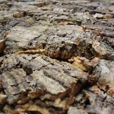 60 x 30 cm Kork Rückwand fürs Terrarium | Naturkork | 3D KorkRückwand | 600x300