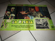 LA RISAIA ELSA MARTINELLI FOLCO LULLI MATARAZZO FOTOBUSTA 1955 RISO MONDINA