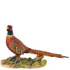 Border Fine Arts Birds and Wildlife A28333 Pheasant
