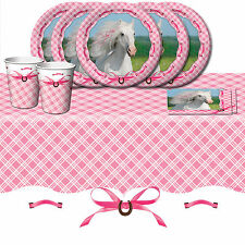 Heart My Horse Pony Children's Birthday Party Tableware Pack Kit For 16
