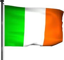 Fahne Irland - Hissfahne 150 x 100cm - Premium Qualität