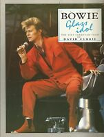 David Bowie - Glass Idol The 1987 European Tour book
